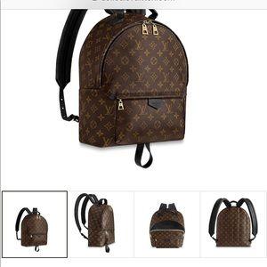 Louis Vuitton back pack 100% authentic